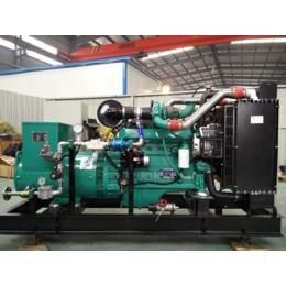 江苏90KW牛粪综合利用发电站 养牛场粪便污水燃气发电机
