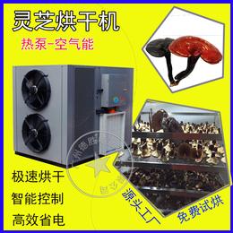 厂家优质供应中药材烘干机