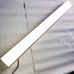 飞利浦明晖LED线条灯RC095V 14W