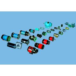 12v120w直流电机、山博电机(在线咨询)、直流电机