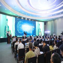 亚博体育ios版文化传媒 城西港区2019首届企业银行对接会
