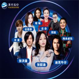 洋河演唱会 九江大胜文化传媒有限公司缩略图