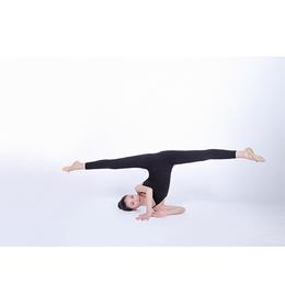 中国舞民族舞课程教师刘梦凡缩略图