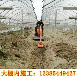 黑龙江小型挖土机 山鼎SD12小型挖土机