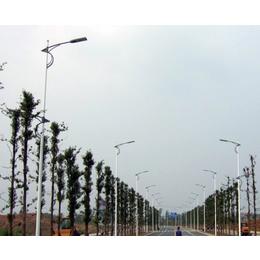 生产led路灯厂家-安徽普烁光电(在线咨询)-安徽led路灯