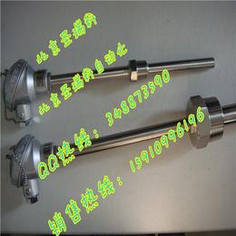 WRN2-230N耐磨热电阻