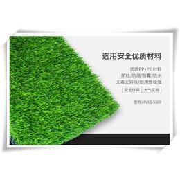 优质的场草坪网价格 环保绿化草坪网
