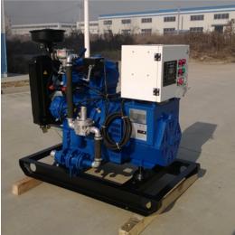 湖南12KW千瓦羊粪气体发电机 畜禽粪污资源化利用发电项目