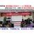 深圳加盟商股权激励方案设计-公司股权架构设计1对1咨询公司缩略图1