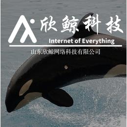 山欣鲸网络科技____抖音点赞APP缩略图