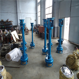 电厂立式泥沙泵-液下管道泥沙泵-沉淀池泥沙泵