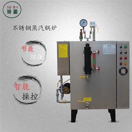 食品蒸煮节能蒸汽锅炉环保蒸气发生器厂家