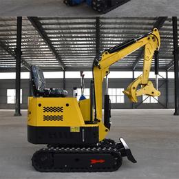 果园挖掘机型号-山东冠林机械(在线咨询)-江苏挖掘机