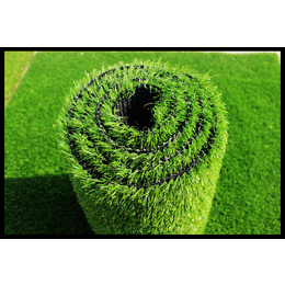 博野太行优质的草坪生产工艺