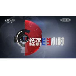 2019在央视财经频道CCTV-2经济半小时栏目做广告多少钱