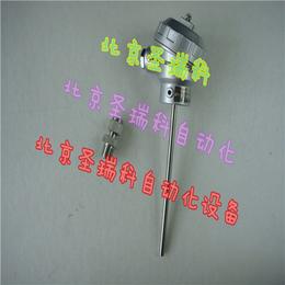 铠装热电阻WZPK2-335