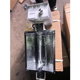 飞利浦1000W植物补光灯具