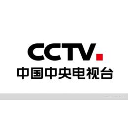 CCTV广告公司什么价位