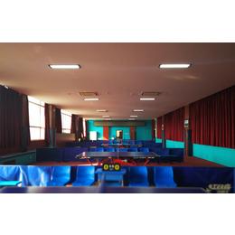 乒乓球馆照明灯光设计-案例说明缩略图