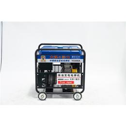 TO300A小型发电电焊机