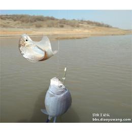 野钓打窝方法-钓鱼王渔具厂家
