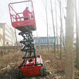 履带升降机 全地形升降机 高空作业车 升降平台 升降车
