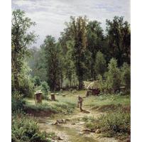 画油画风景时,该如何选定视角