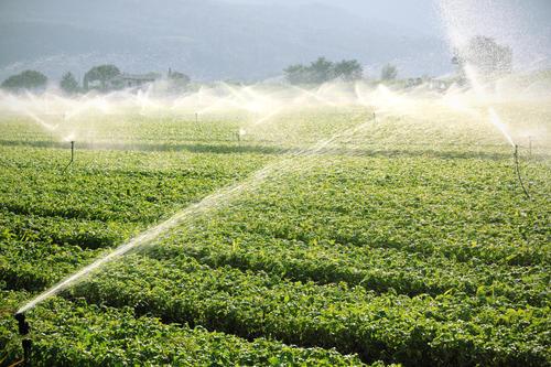 微灌系統中過濾設備的應用