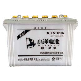6-EV-120A型 电动三轮车电池