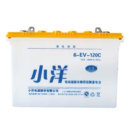 6-EV-120C型 巡逻车电动三轮车蓄电池电瓶