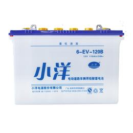 江西电池厂家热销6-EV-120B型 电动电瓶