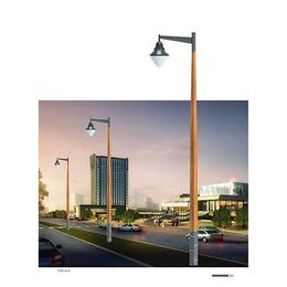 20w太阳能庭院灯-太原诚泰道路照明-山西太阳能庭院灯
