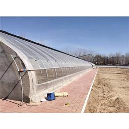贵贵温室施工公司-信阳温室工程公司-寿光宏远温室工程公司