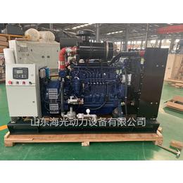 供应厂家直销80KW燃气发电机组  潍柴燃气发电设备80千瓦