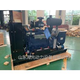 厂家直供80千瓦天然气发电机   天然气发电机组设备80KW