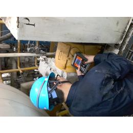 瑞典Mainttech进口CXBalancer现场动平衡仪