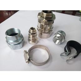 电缆管接头 铜镀镍蛇皮管接头 黄铜端接式软管接头