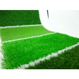 人造草坪价格-人造草坪-奥创之星(查看)