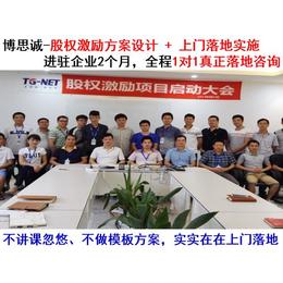 东莞非上市公司股权激励方案设计咨询落地-股权激励方案设计专家