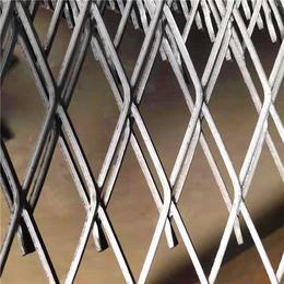 百鹏丝网(图)-钢板网片-机械防护钢板网片-铁