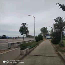 济南路灯-希科节能(在线咨询)-路灯