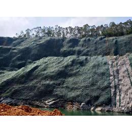 矿山高陡边坡治理生态修复团粒剂稳定剂厂家销售