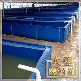 养殖水池安装说明 帆布养殖水池型号价格 帆布水池图片缩略图
