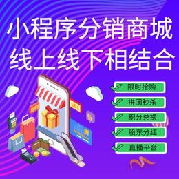 APP分销商城系统线上门店管理系统