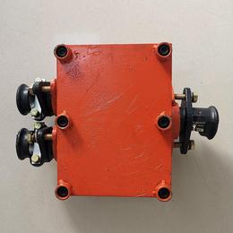 矿用隔爆型电缆分线盒BHD2-100-660-3G