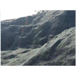 山体护坡绿化植草喷播土壤团粒剂厂家直销