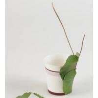 纸杯DIY漂亮插花 装饰盆景美美哒!