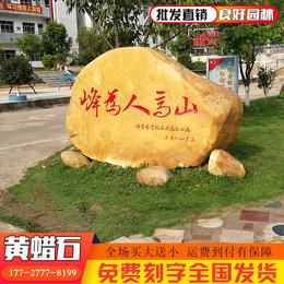 良好园林直销江苏校园黄蜡石校园园林景观石工程校园风景石出售