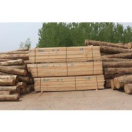 旺源木业(图)-铁杉建筑木材三米价格-铁杉建筑木材