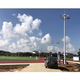 一体化太阳能路灯安装工程-户外照明厂家华尔迪